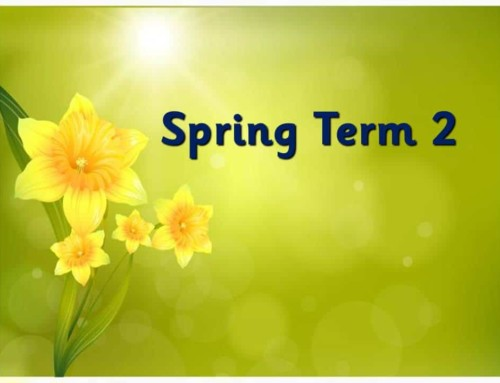 Spring Term 2 Gallery