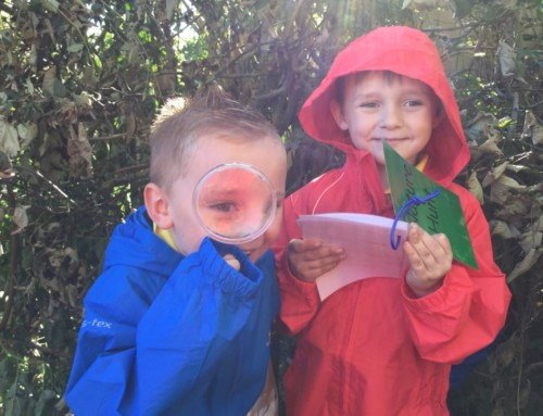 Outdoor Learning with Year 1