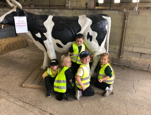 Reception Trip to Playdale Farm